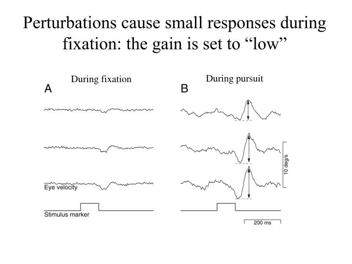 "Perturbations cause small responses during fixation: the gain is set to ""low"""