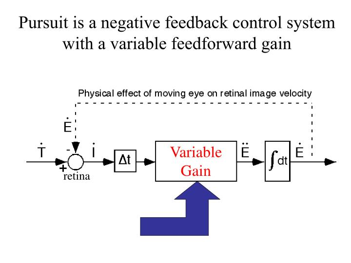 Pursuit is a negative feedback control system with a variable feedforward gain