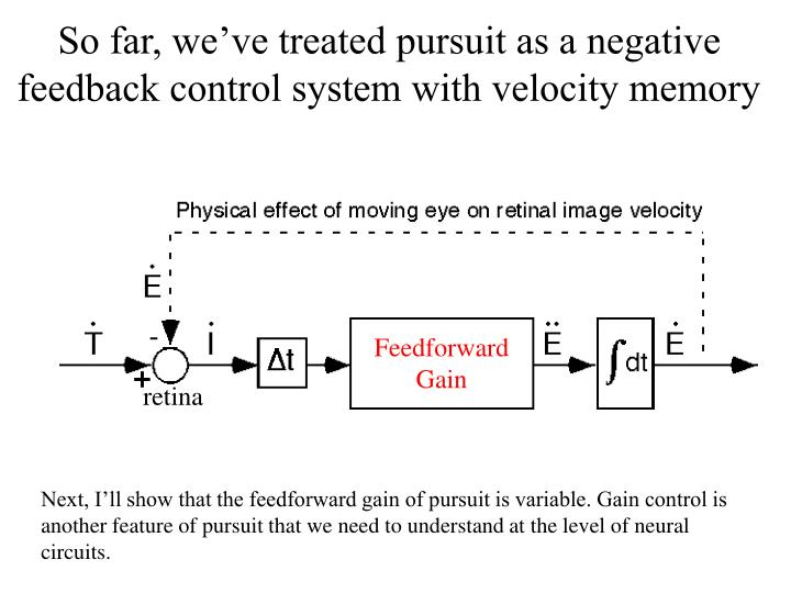 So far, we've treated pursuit as a negative feedback control system with velocity memory