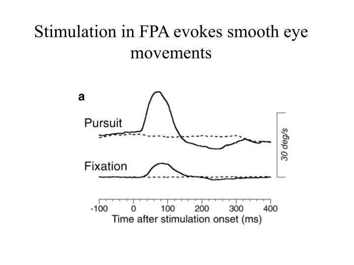 Stimulation in FPA evokes smooth eye movements