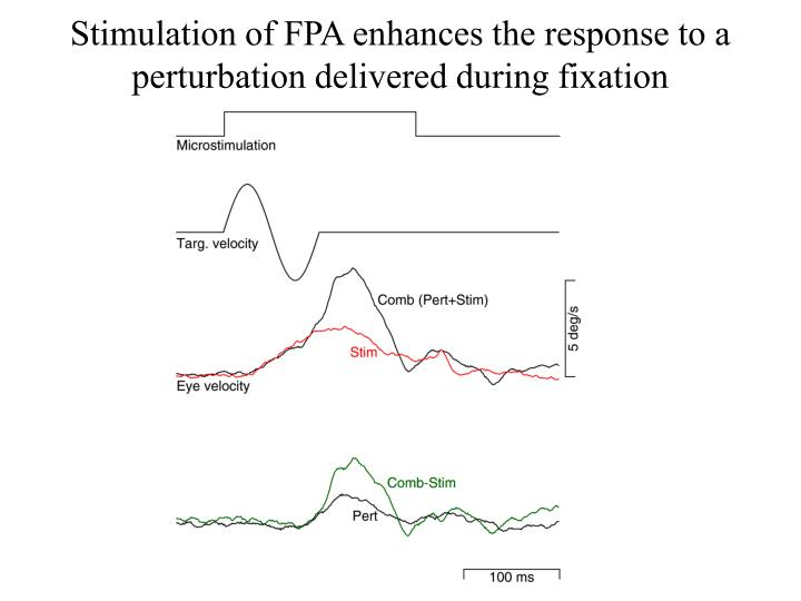 Stimulation of FPA enhances the response to a perturbation delivered during fixation