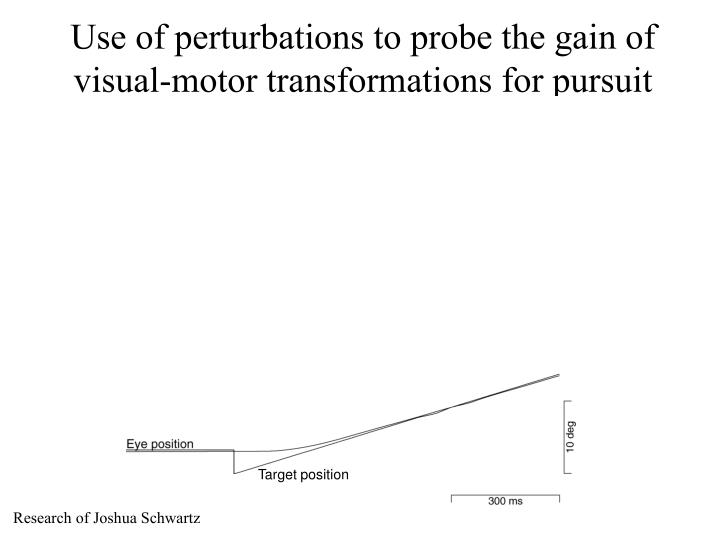 Use of perturbations to probe the gain of visual-motor transformations for pursuit