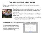 role of the individual labour market