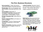 the firm business structures