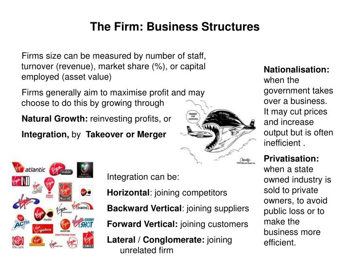 The Firm: Business Structures