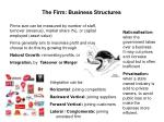 the firm business structures1
