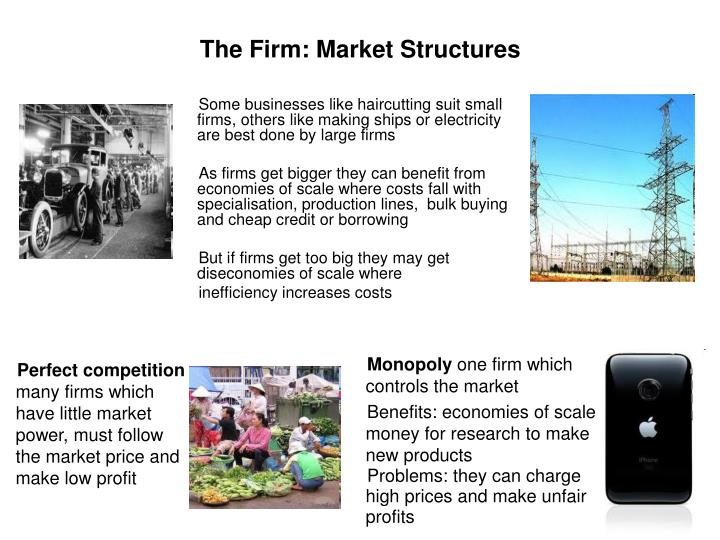The Firm: Market Structures