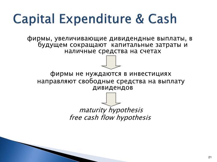 Capital Expenditure & Cash