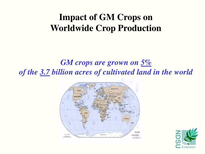 Impact of GM Crops on