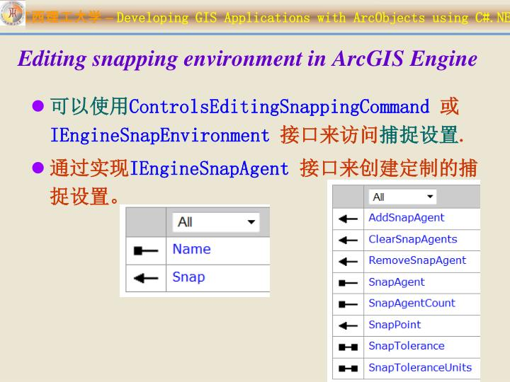 Editing snapping environment in ArcGIS Engine