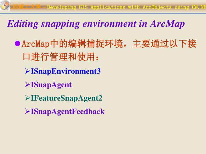 Editing snapping environment in ArcMap