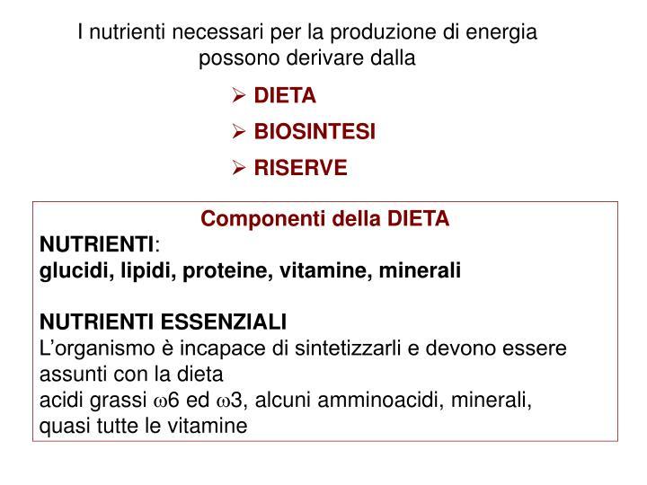 I nutrienti necessari per la produzione di energia possono derivare dalla
