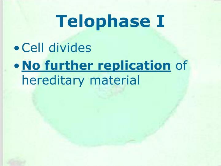 Telophase I