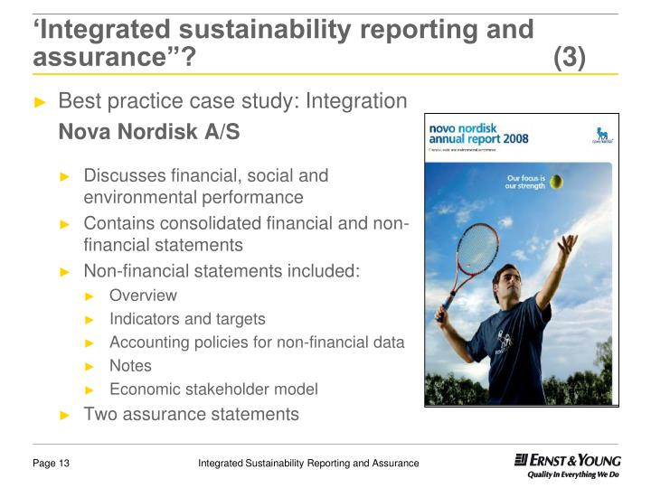 "'Integrated sustainability reporting and assurance""? (3)"