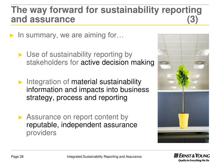 The way forward for sustainability reporting and assurance(3)