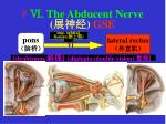 the abducent nerve gse