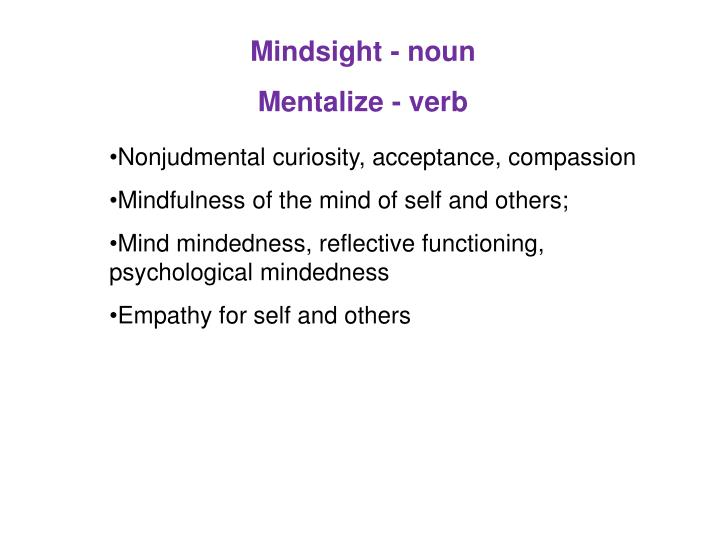 Mindsight - noun