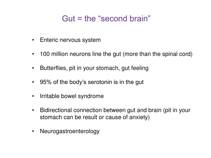 "Gut = the ""second brain"""