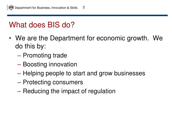 What does BIS do?