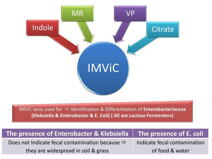IMViC