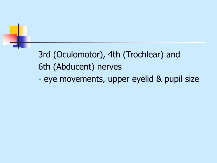 3rd (Oculomotor), 4th (Trochlear) and