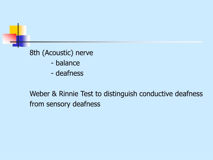 8th (Acoustic) nerve