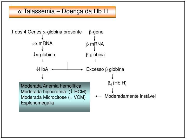  Talassemia – Doença da Hb H