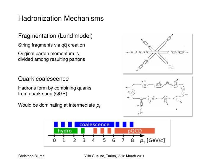Hadronization Mechanisms
