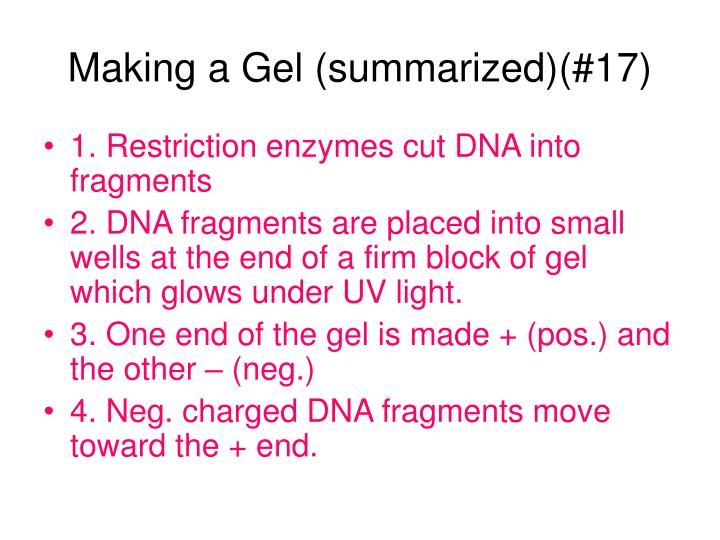 Making a Gel (summarized)(#17)