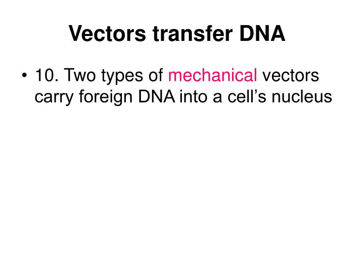 Vectors transfer DNA