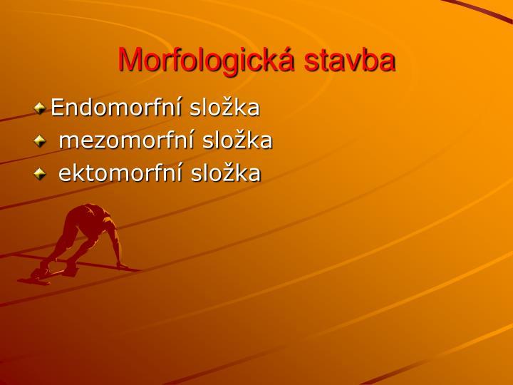Morfologická stavba
