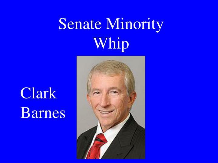 Senate Minority