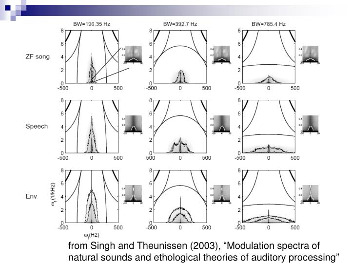 "from Singh and Theunissen (2003), ""Modulation spectra of natural sounds and ethological theories of auditory processing"""