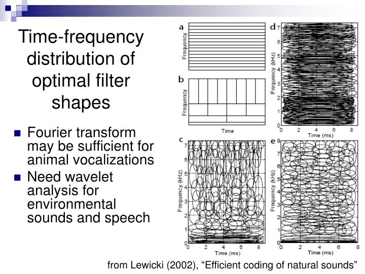 Time-frequency distribution of optimal filter shapes