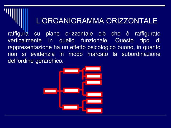 L'ORGANIGRAMMA ORIZZONTALE