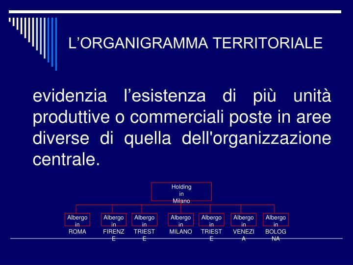 L'ORGANIGRAMMA TERRITORIALE