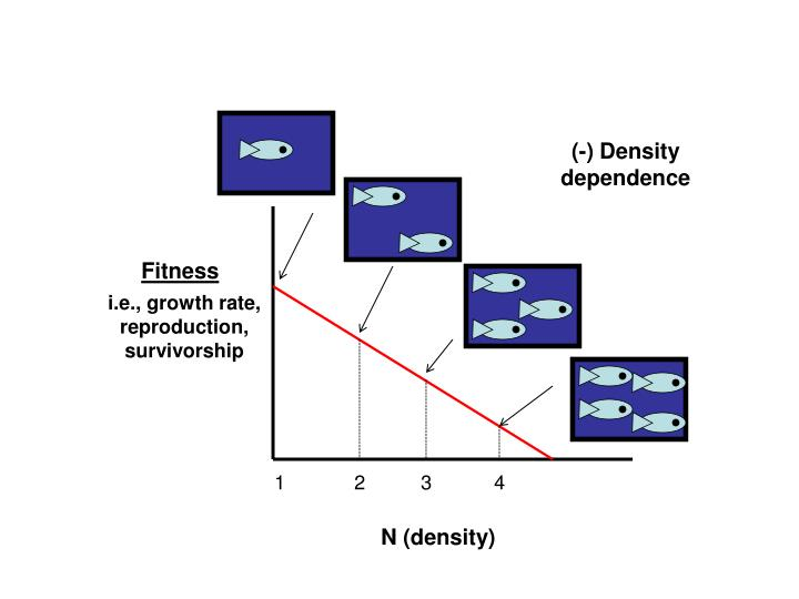 (-) Density