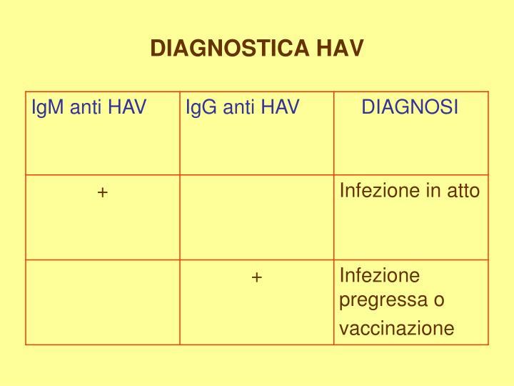 DIAGNOSTICA HAV
