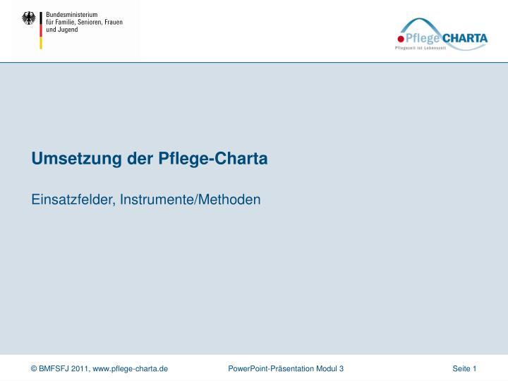 Umsetzung der Pflege-Charta