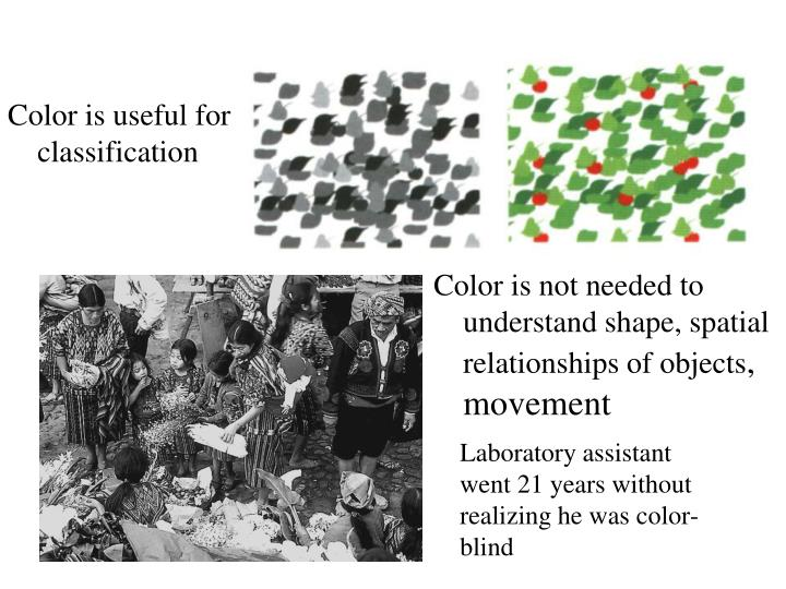 Color is useful for classification