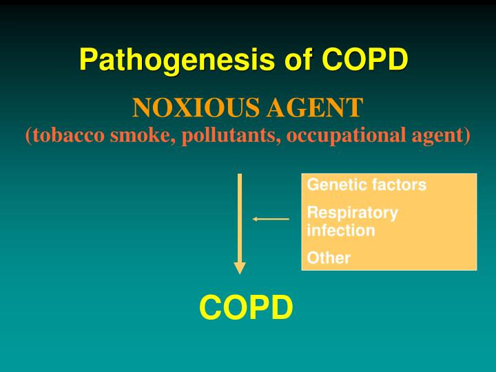 Pathogenesis of COPD