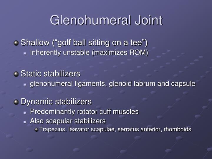 Glenohumeral Joint
