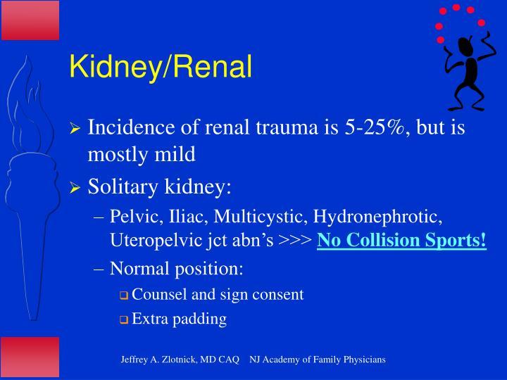 Kidney/Renal