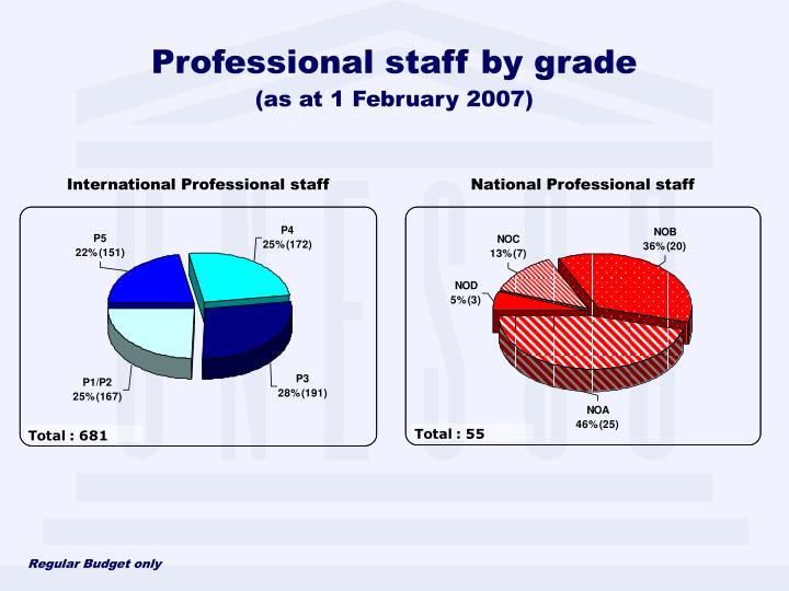 Professional staff by grade