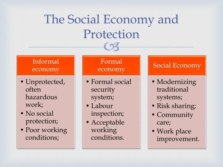 The Social Economy and Protection
