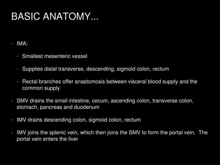 BASIC ANATOMY...
