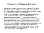 productivity of industry segments