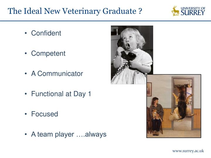 The Ideal New Veterinary Graduate ?