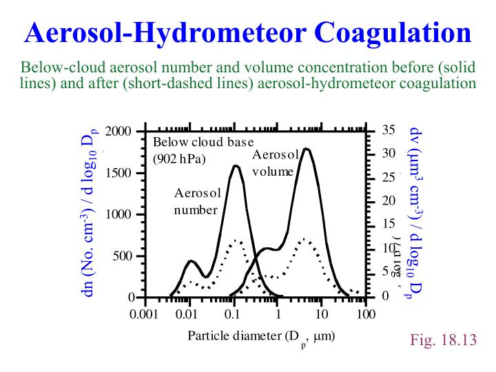 Aerosol-Hydrometeor Coagulation