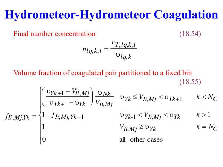 Hydrometeor-Hydrometeor Coagulation